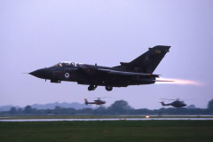 CF-87-004