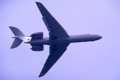 CF-87-006