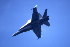 CF-89-009